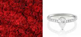 Should You Finance Or Purchase An Engagement Ring? We Makes It Easy!
