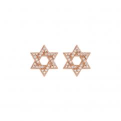 14k Gold and Diamond Star of David Earrings