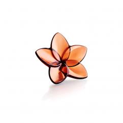 Baccarat Bloom Mahogany
